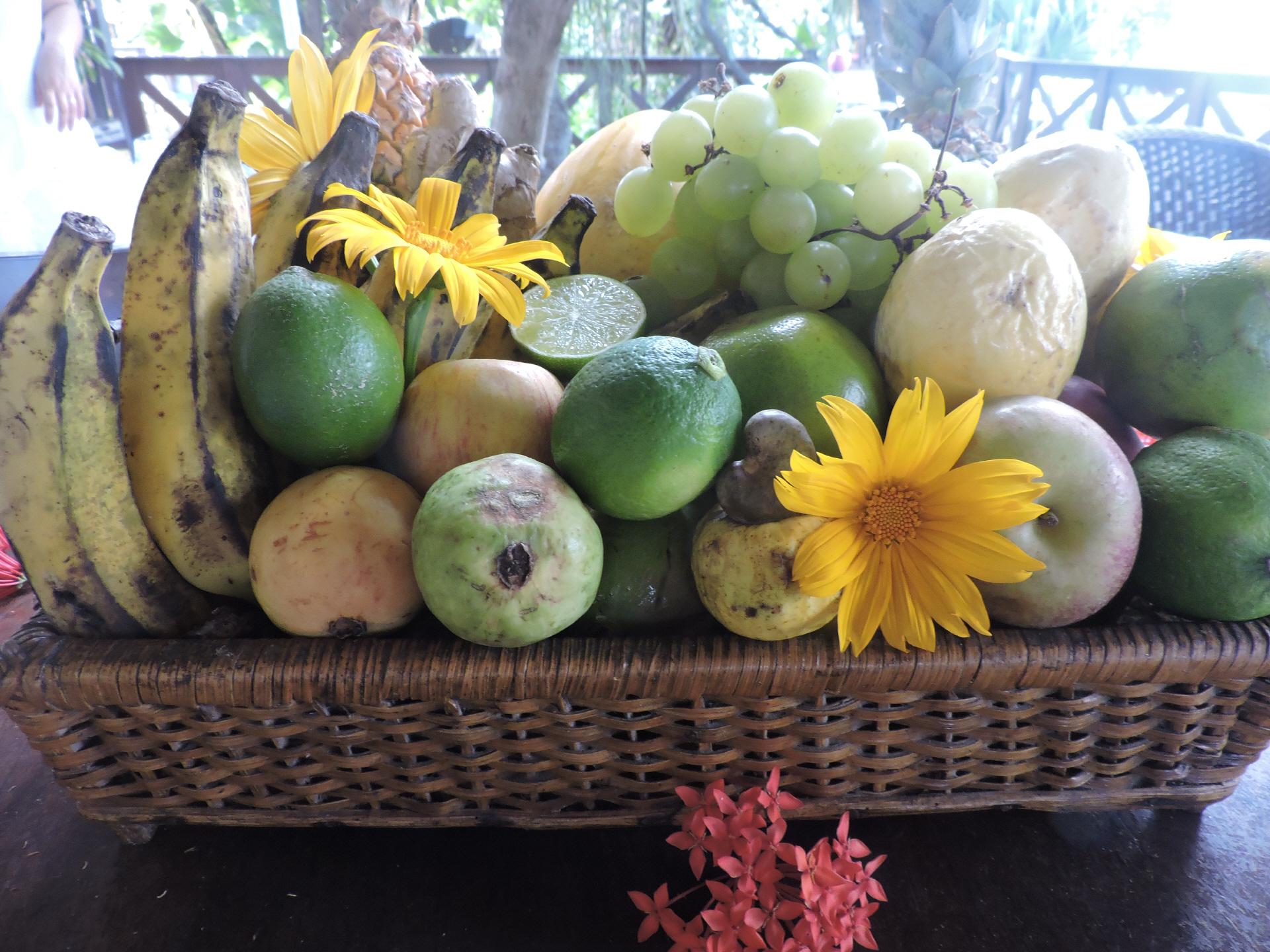 kreol la suriname, kochkurse, exotisches essen, tafeln am sonnenhügel